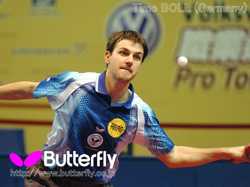 Pictures Wallpaper Butterfly Alex Table Tennis Mytabletennis